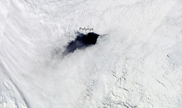 Weddell Polynya