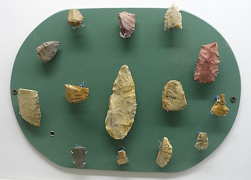 Paleo-Indian collection