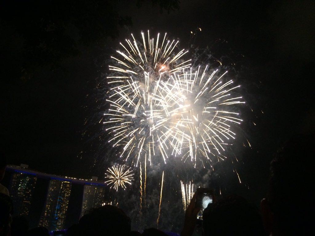 Singapore New Year 2020
