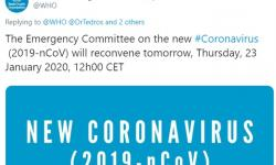 WHO's statement on coronavirus