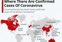 Confirmed cases of the 2019 coronavirus