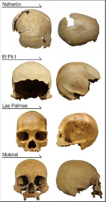 The early Quintana Roo specimens analyzed in this study.