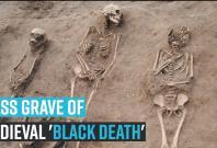 mass-grave-of-medieval-black-death