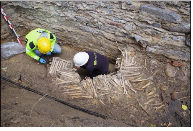 Belgium bone walls
