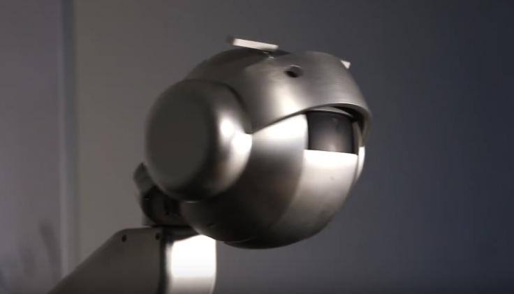 Shimon the robot