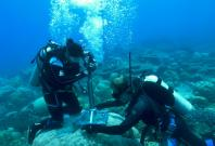 Underwater coral drilling