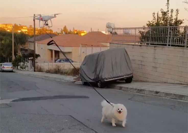 Man uses a drone to walk his pet dog due to Coronavirus lockdown in Cyprus.