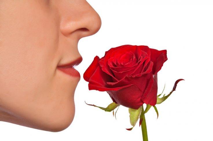 Anosmia: lack of smell