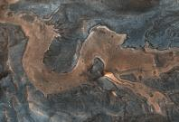 Dragon On Mars