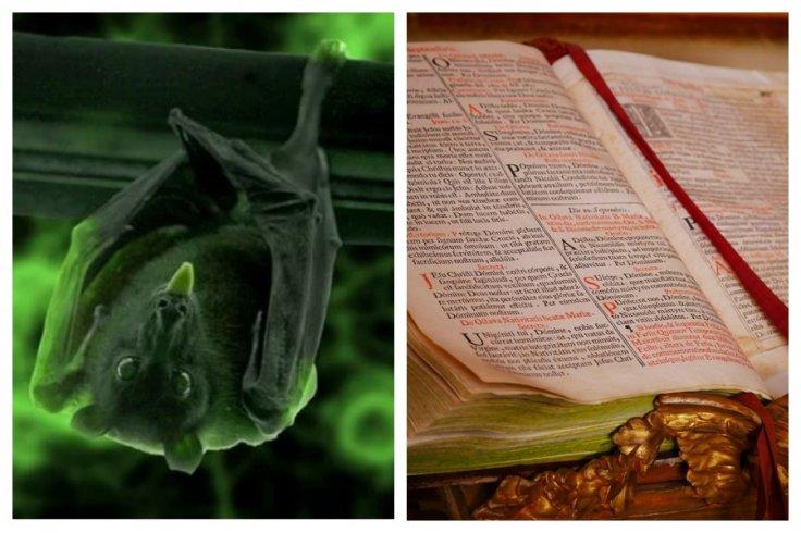 bats old testament