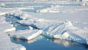 Arctic sea-ice