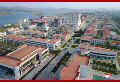NK factory