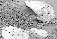 alien life on mars