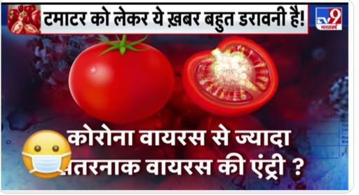 Tomato Virus