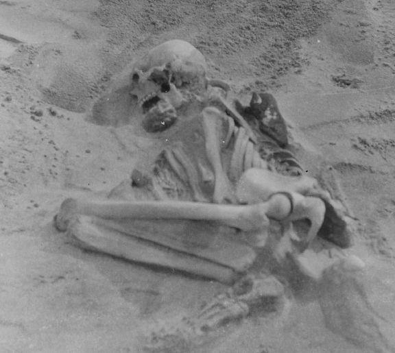 Tiree skeleton
