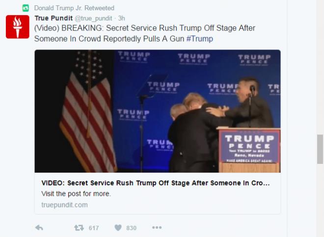 Donald Trump Jr. retweeted