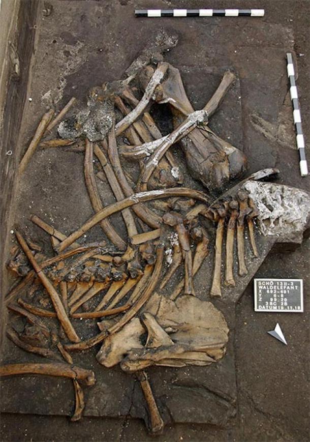 Germany excavation
