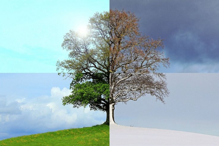 Climate and Seasons