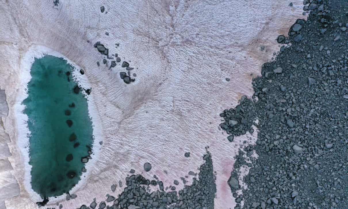 Algae turns Italian Alps glacier pink prompting concerns over climate change