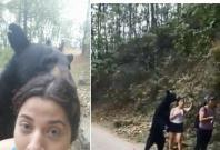 Moment hikers encountered a wild black bear