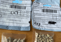 Seed packets from China