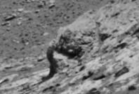 elephant head on mars