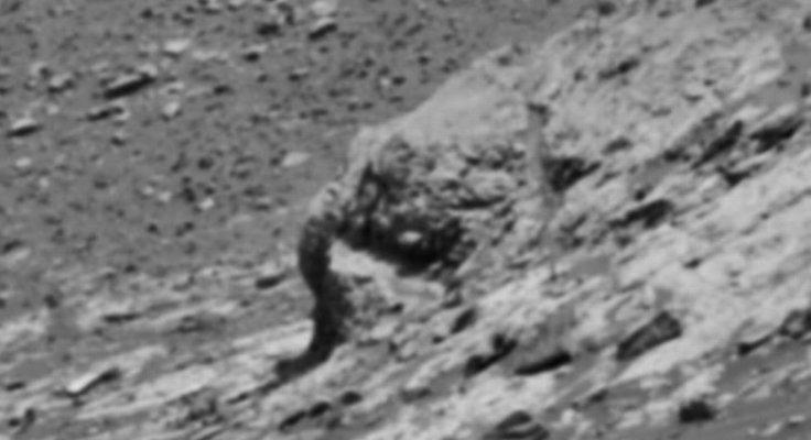 elephant head on mars