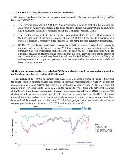 Yans Report on Cronavirus