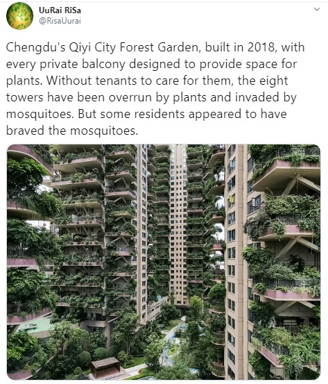 Chengdu's Qiyi City Forest Garden