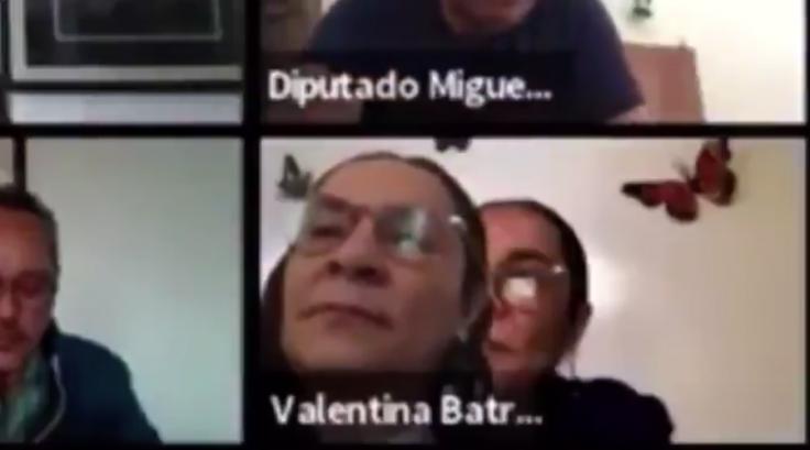 Valentina Batres Guadarrama