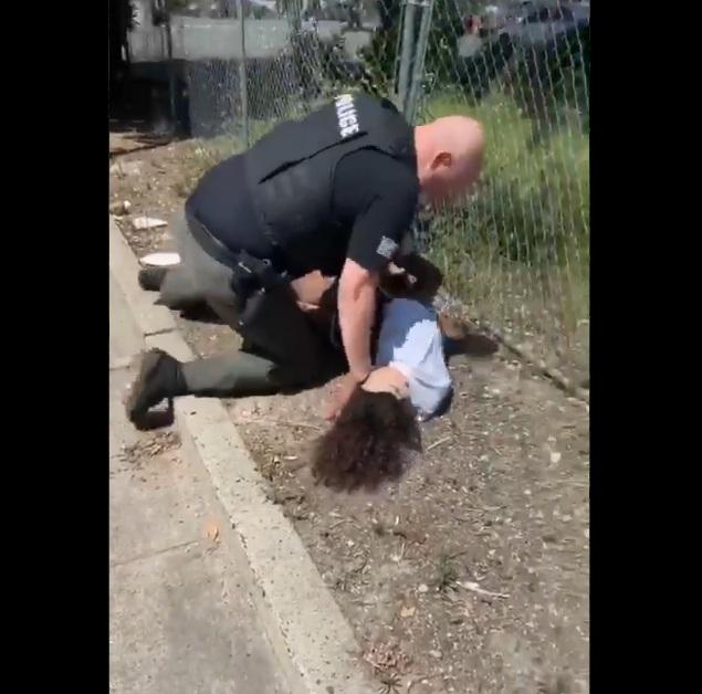 Cop Punching