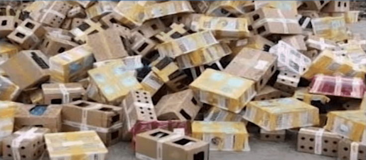 Animals transported in boxes