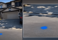 Blue Dots Outside Homes in California
