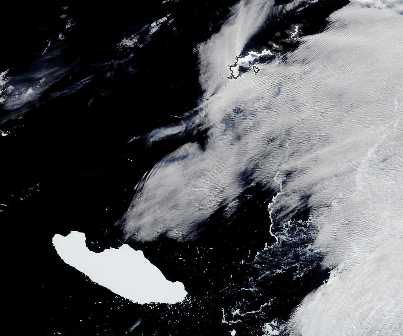Iceberg floats toward South Georgia, puts wildlife at risk