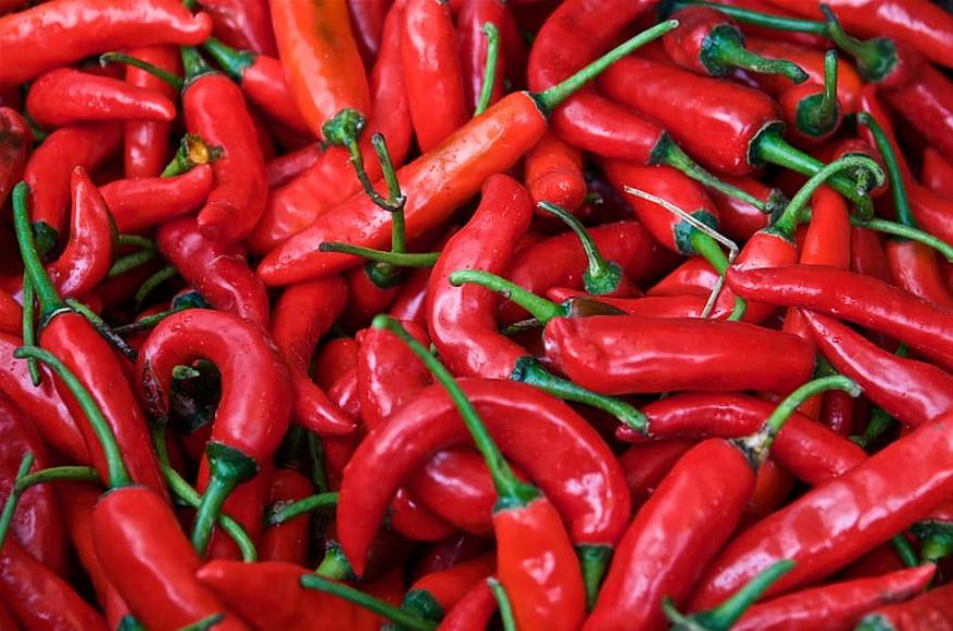 Regular intake of chilli peppers could lengthen one's life