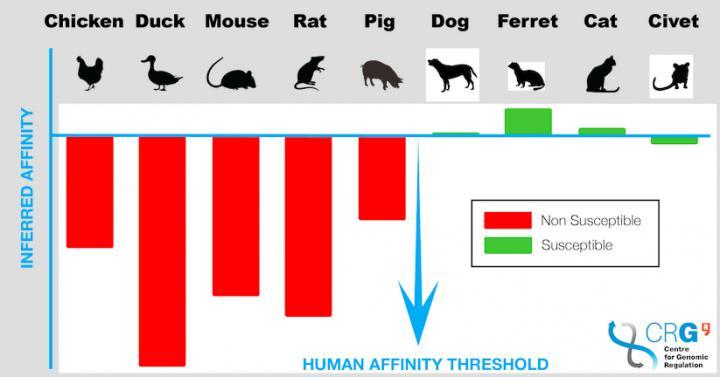SARS-CoV-2 across eight different species