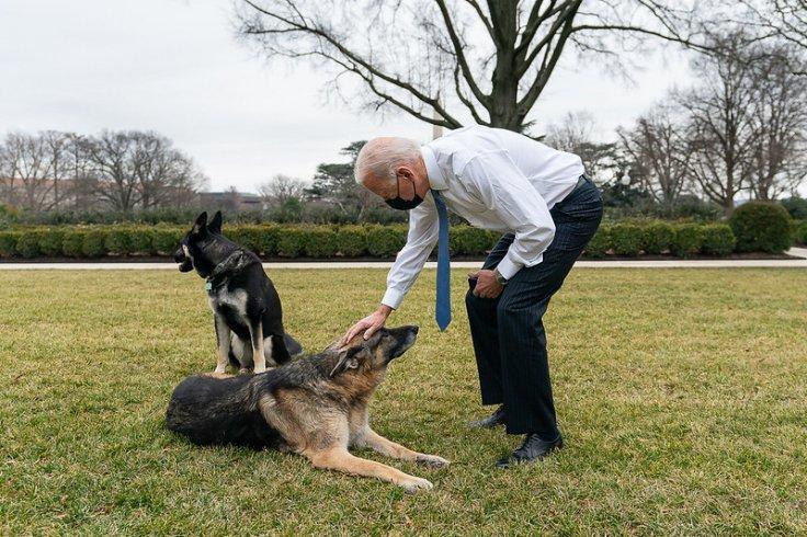Champ and Major Biden
