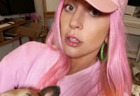 Lady Gaga's French bulldogs stolen