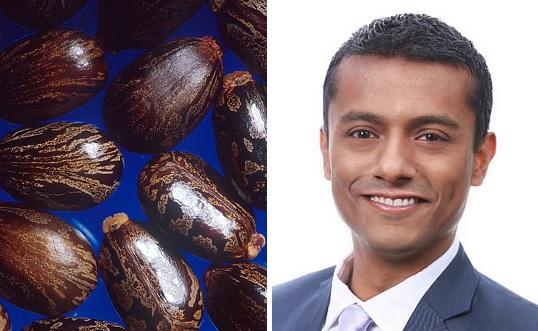 Castor beans Dr Saeem