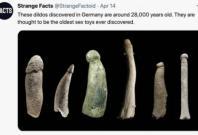 Strange Fact Phalluses