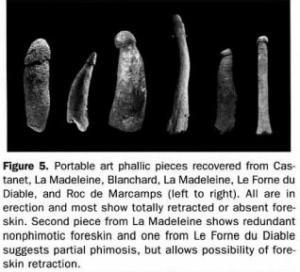 Phalluses