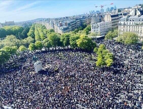 Sara Halimi protest