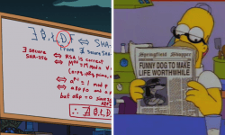 The Simpsons dogecoin prediction,