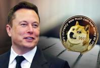 Elon Musk doge