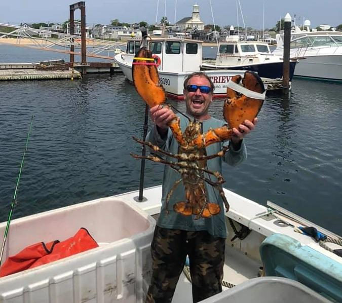 Michael Packard witha  giant lobster