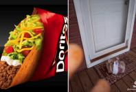 DoorDash driver caught red-handed