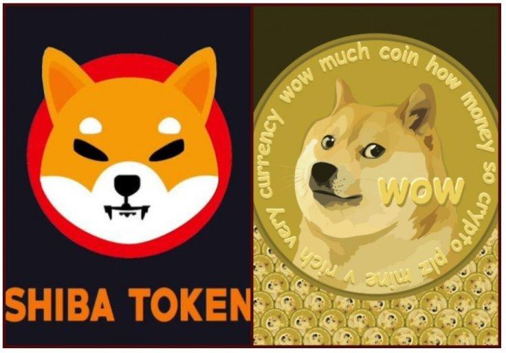 Shiba Inu Vs Dogecoin Cryptocurrency