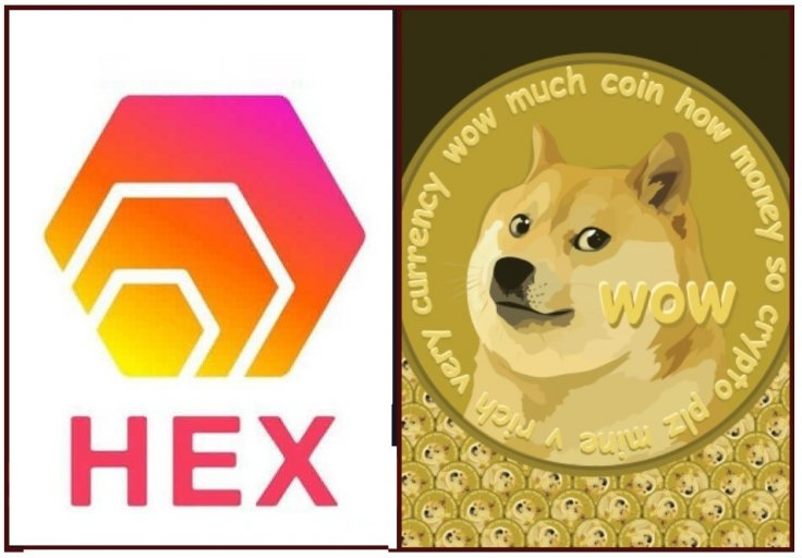 Hex Coin Dogecoin Cryptocurrency