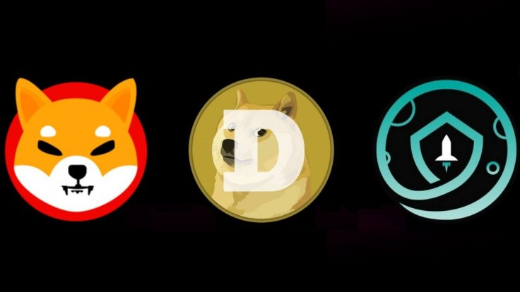 Shiba Inu Dogecoin SafeMoon Cryptocurrency Coins