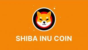 Shiba Inu Cryptocurrency Coin SHIB Token